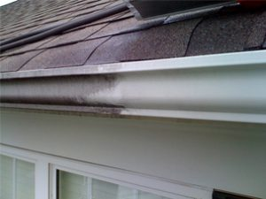 Before After Exterior Gutter Clean